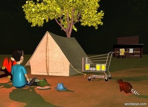 a tent.a cart is right of the tent.the cart is in front of the tent.the cart is facing south west.a store is 80 feet behind the tent.a campfire is 4 feet in front of the tent.a pan is right of the campfire.a 0.6 feet tall fish is -6 inches above the pan.the fish is facing left.a 1st can is -22 inches above the cart.a 2nd can is left of the 1st can.a 3rd can is right of the 1st can.a 4th can is left of the 2nd can.a plate is right of the pan.the plate is in front of the pan.a lettuce is on the plate.a 3 feet tall man is in front of the pan.the man is facing the pan.a tree is 30 feet behind the tent.the tree is left of the tent.it is evening.a hat is 3 inches right of the plate.the hat is sea spray blue.the hat is facing southeast.the ground is dirt.a yellow light is -5 feet in front of the tent.a 70% red light is above the campfire.a raccoon is 3 feet right of the hat.the raccoon is facing northwest.