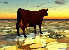 a cow.ground is 10 feet tall.ground is 150 inch wide [currency].camera light is gold.two 60% dim gold lights are above the cow.