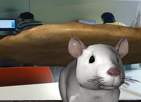 The [image-11279] wall. The wall is 12 feet wide. The enormous rat is in front of the wall. The huge pizza is on the rat.