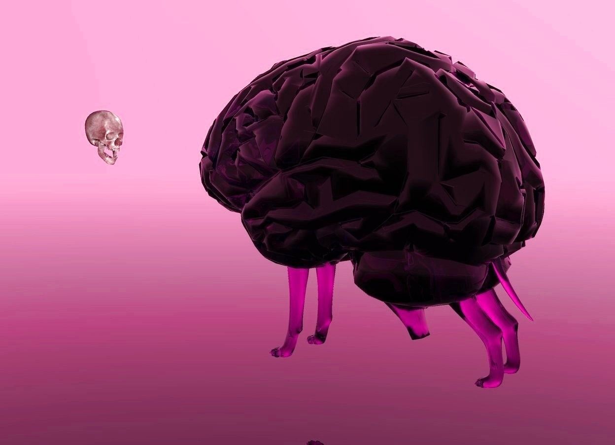 Input text: the sky is hot pink. the ground is clear. there is a very large purple clear brain. the brain is 1 foot above the ground. a clear purple dog is 3.7 feet in the brain. a pink bone is 2 feet in front of the brain. the bone faces the brain. the bone is 3 feet above the ground.