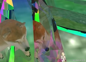 the huge clear xi is 5 feet above the ground. the clear xi is facing down. the sky is rainbow.  the ambient light is pink. it is noon.  the tiny dog is 0.6 feet in the huge clear xi. the tiny dog is -1.7 feet in front of the huge clear xi. the tiny dog is facing west.