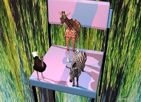 a chair.the chair's cushion is sea spray blue.a 2 feet tall giraffe is -22 inches above the chair.a 1 feet tall zebra is right of the giraffe.a 1 feet tall ostrich is left of the giraffe.the ostrich is -3 inches in front of the giraffe.the zebra is -8 inches in front of the giraffe.silver ground.the sky is [forest].a rust light is above the giraffe.the ostrich is facing southeast.the sun is pink.a red light is left of the zebra.