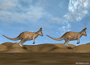 2 kangaroos are standing on the ground. They leans 30 degrees to the front. They face west.