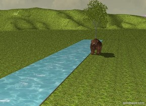 The ground is grass. In front is a Long stream. Behind the stream is a  american sycamore tree. A Brown bear is on the right of the stream.