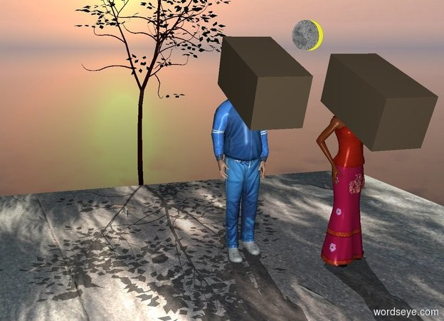 Input text: a image-11359 floor.  a man is on the floor. the sun's azimuth is 10 degrees. a 1st 1.5 foot tall and 3 foot deep and 1.5 foot wide 40% dark tan cube is -1.5 foot above and -1 foot in front of the man. it leans to the front. a woman is 1 foot to the right of and in front of the man. a 2nd 1.5 foot tall and 3 foot deep and 1.5 foot wide 40% dark tan cube is -1.5 foot above and -1 foot in front of the woman. it leans to the front. a 1st small 80% yellow moon is 1 foot above and 2 feet behind the woman. a 2nd 1 foot tall flat moon is in front of and -.8 foot to the left of the 1st moon. a small tree is behind the floor. the ground is clear.