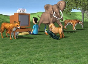 the ground is grass. 5 trees. a big tiger. an elephant 10 feet away from the tiger. a giant computer. a boy is in front of the computer. the boy is facing to the computer. 3 big rabbits are  on the computer. a giant fox is left to the computer. a big fox is 5 feet away from the boy. a giant dog is 7 feet in front of the computer. the dog is facing to the boy. the bird is next to the dog. it is facing to the boy