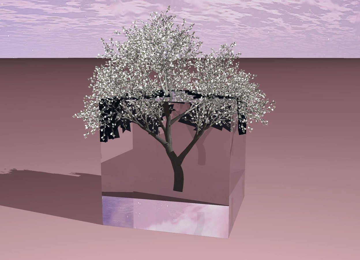 Input text: It is morning. Ground is pink. A transparent cube is 14 feet tall. There is a tree inside cube.