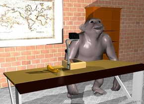 Projector on top of desk. Bright light 2 inches in front of projector. 100 foot long brick wall 6 feet in front of desk. 6 feet wide 4 feet tall image-11396 picture 3 feet above ground .2 inches behind brick wall. Picture facing north. Gray carpet ground. Ant .4 inches left of desk. 5 foot tall chimpanzee 1 foot in front of ant. Apple 5.4 feet behind desk. Chimpanzee facing apple. Banana 4 inches right of projector. bookcase 2 feet left of picture 1 inch behind wall .1 inch above ground. Bookcase facing north.