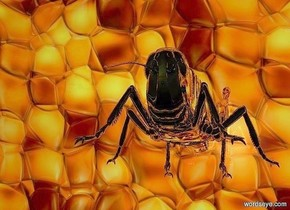 a  150 inch tall shiny [amber] cube..a 7 inch tall  silver grasshopper is -68 inch above the cube.the grasshopper is 4 inch in front of the cube.the grasshopper is facing south.ground is clear.it is evening.camera light is gray.
