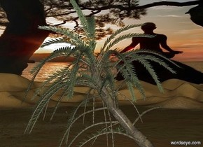palm tree.sky is 1500 feet tall.sky is 9000 inch wide [sea].