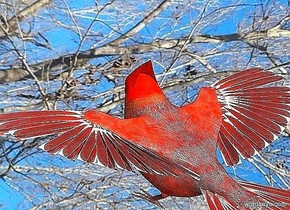 a small bird is 5 feet above the ground. it faces southeast.  sky is 4000 foot wide [wintery]. a dim linen light is south of and east of the bird. ground is silver. a silver light is 10 feet above the bird.