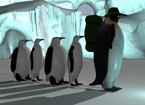 a 1st penguin.a 1st backpack is -20 inches behind the 1st penguin.the 1st backpack is 2 feet above the ground.a dark green hat is -2.7 inches above the 1st penguin.the hat is -15 inches in front of the 1st penguin.the hat is leaning 5 degrees to the north.a 2nd penguin is 2 inches behind the 1st penguin.a 3rd penguin is 2 inches behind the 2nd penguin.a 4th penguin is 2 inches behind the 3rd penguin.a 5th penguin is 2 inches behind the 4th penguin.the ground is snow.it is morning.a 40% aqua light is 1 feet in front of the 1st penguin.the camera light is dark.