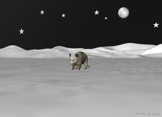 Input text: The sky is black. The ground is snow. An opossum. The white moon is 10 feet behind the opossum. The moon is 4 feet above the ground. A white star is 1 feet left of the moon. The star is 3 inches tall. A white star is 6 inches left of the star. The star is 6 inches tall. The star is 4.5 feet above the ground. A white star is 3 feet left of the star. The star is 5 inches tall. A white star is 2 feet left of the star. The star is 6 inches tall. The star is 5 feet above the ground. A white star is 2 feet left of the star. The star is 8 inches tall. The star is 3 feet above the ground. A white star is 2 feet right of the moon. The star is 6 inches tall. The star is 3 feet above the ground.