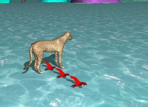 The cheetah is leaping over the ocean with the flock of 3 red seagulls.