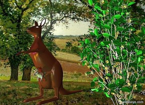 the kangaroo is left of the bush.  the countryside backdrop.  the cyan light is in front of the kangaroo. the yellow light is left of the cyan light.  the magenta light is above the yellow light.  the white light is above the kangaroo.
