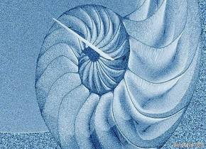 a 100 inch tall and 100 inch wide and 100 inch deep sand nautilus shell.a sand backdrop.the nautilus is facing west.