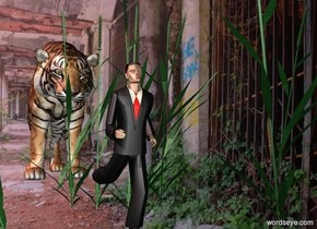 house backdrop.a tiger.a tiny man is 3 feet in front of the tiger.a 2.5 feet tall grass is in front of the tiger.pink sun.