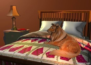 The  sienna  backdrop. A bed. The bed's blanket is  2 foot wide [scene]. its pillow is white. a 2 foot deep and 3 foot wide nightstand is left of and -2 feet behind the bed. a lamp is on and -2 foot left of the nightstand. a gold light is -1.4 foot above and -.3 foot right of the lamp. a book is -.5 foot right of the lamp. it faces the bed. it leans 90 degrees to the front. a 2 foot tall dog is -2.8 feet above and -1 foot in front of and -3.5 feet right of the bed. camera light is dim. a sienna light is in front of the dog.