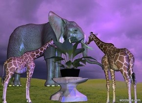 a shiny item.a shiny plant is -0.5 inches above the item.a 1st 1 feet tall giraffe is right of the item.it is facing the item.the plant is -9.5 inches left of the item.a 2nd 1 feet tall giraffe is behind the item.grass backdrop.a large elephant is 20 feet in front of the item.it is left of the item.the elephant is facing northwest.a green light is behind the elephant.a blue light is behind the 2nd giraffe.the sun is lavender.