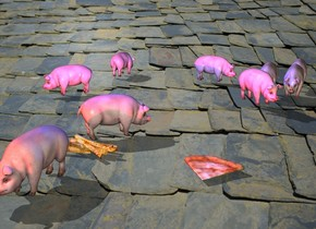 roof backdrop. a tiny pig. shadow plane. a 2nd tiny pig is 6 inches behind the tiny pig. 2nd tiny pig is facing northeast. a 3rd tiny pig is 8 inches behind the 2nd tiny pig. 3rd tiny pig is 10 inches left of the 2nd tiny pig. the 3rd tiny pig is facing southwest. a 4th tiny pig is 12 inches behind the 3rd tiny pig. 4th tiny pig is facing north. a 5th tiny pig is 15 inches right of the 4th tiny pig. 5th tiny pig is facing east. a 6th tiny pig is 10 inches right of the tiny pig. 6th tiny pig is in front of the tiny pig. a 7th tiny pig is 1 inches left of the tiny pig. 7th tiny pig is in front of the tiny pig. the 7th tiny pig is facing southeast. a blue light is 6 inches above the 2nd tiny pig. grey sun. a 60 % red light is 1 feet in front of the tiny pig. a group is in front of the tiny pig. the small pizza is 7 inches to the right of the group.