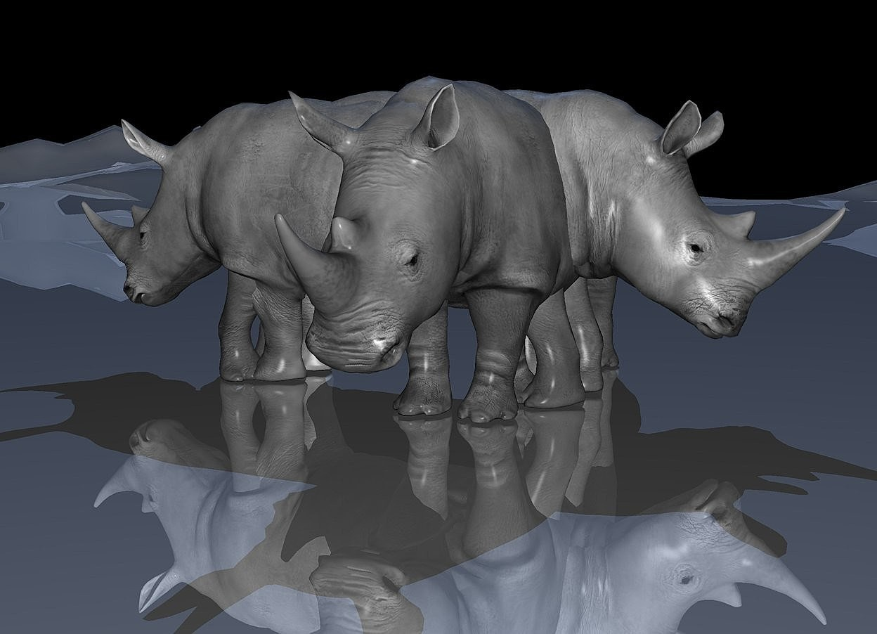 Input text: a 1st 110 inch tall  rhinoceros.the 1st rhinoceros is gray.sky is invisible.ground is shiny.a 2nd 110 inch tall gray rhinoceros is -120 inch left of the 1st rhinoceros.the 2nd rhinoceros is facing west.azimuth of the sun is 70 degrees.sun is delft blue.a 3rd 110 inch tall gray rhinoceros is -70 inch right of the 1st rhinoceros.the 3rd rhinoceros is facing north.the 3rd rhinoceros is -310 inch in front of the 1st rhinoceros.