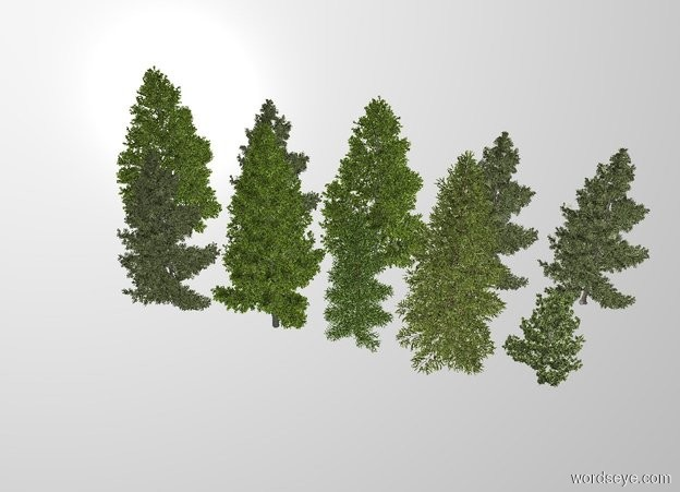Input text: THE WHITE BACKDROP. There are 5 fir trees behind 5 fir trees.