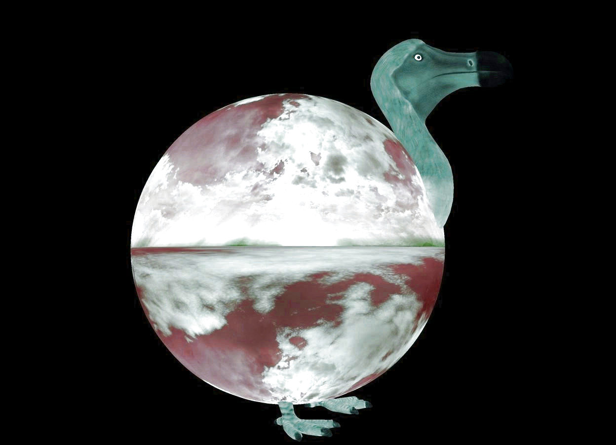 Input text: a ball. a 5000 feet tall gray dodo is 1000 feet behind and 1000 feet left of the ball. the dodo is -2200 feet above the ground. it is facing northwest. the camera light is black. it is morning. the sun's azimuth is 190 degrees. the sun's altitude is 10 degrees.  a 1st dim white light is in front of the dodo. a 2nd dim white light is 500 feet  above the 1st light. a 3rd dim white light is 1000 feet above the 2nd light.. a 4th dim white light is 500 feet above the 3rd light. the ambient light is  navajo white.
