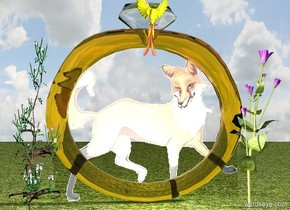 There is a fox.  There is a yellow bird in the fox. The bird is facing north.  There is a clear ring behind the fox. The ring is 4 feet wide and 4 feet tall and 6 inches deep.   The bird is behind the ring.   The ground is grass. There is a light behind the ring.  There is a flower fourteen inches to the left of the bird. The flower is on the ground. The flower is 3 feet tall and one foot wide and one foot deep.  There is a flower fourteen inches to the right of the bird. The flower is on the ground. The flower is 3 feet tall and one foot wide and one foot deep.