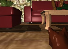 a wall. a sofa is in front of the wall. wall is pattern. a 1 foot tall table is one foot in front of the sofa.  a chair is left of and 1 foot in front of the sofa. it faces right. the ground is 15 foot wide wood.  a 5 foot tall plant is -1 foot left of the sofa. a 6 foot tall person is on and -4.5 feet to the right of and -2 feet behind the table. he faces southwest. he leans 90 degrees to the back. a mouse is -.5 foot in front of and -.8 foot to the left of the sofa. a small house cat is 7.3 feet in front of and .3 foot to the right of the mouse. it faces the mouse.