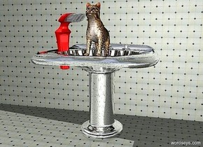 a 170 inch tall and 200 inch wide and 180 inch deep silver pedestal sink.a 1000 inch wide and 1000 inch tall [tile] wall is 40 inch behind the sink.ground is [tile].a 80 inch tall cat is -60 inch above the sink.the cat leans 20 degrees to back.a 100 inch tall and 30 inch wide and 100 inch deep  toothbrush is -8 inch left of the cat.the toothbrush is facing southeast.the handle of the toothbrush is chili red.