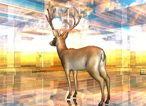 a 2 foot tall and 10 foot wide and 10 foot deep shiny [space] thing. a 1 foot tall animal is -2 feet above the thing. a sienna light is above the animal.