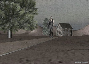 a 300 feet deep path.a house is behind the path.a 1st tree is left of the house.the path is 1 inches in the ground.a woman is 140 feet in front of the house.a 2nd tree is 2 feet left of the woman.the house is facing southwest.the ground is 70 feet tall.the ground is dirt.