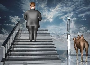 a 100 inch tall and 100 inch wide and 200 inch deep shiny black stair.sky is 3500 feet tall.sky is 20000 inch wide [cloud].ground is shiny.a 100 inch tall man is -67 inch above the stair.the man is facing north.a 400 inch tall  and 10 inch wide and 5 inch deep silver needle is 40 inch right of the stair.the needle is -300 inch above the ground.a 50 inch tall camel is 30 inch in front of the needle.the camel is on the ground.the camel is facing the needle.