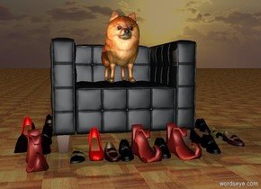 it is sunset. the 2 feet tall dog is on the 1st seat. the ground is [floor]. 7 shoes are in front of the seat. 6 shoes are left of the seat. 5 shoes are right of the seat. 4 shoes are 6 inches to the right of the 5 shoes. 3 shoes are to the left of the 6 shoes.