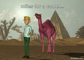 the [pyramid] backdrop.  the man is two feet in front of the pink camel.