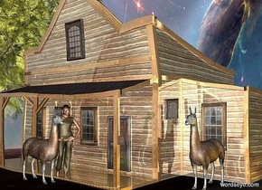 a item.the item is 150 feet deep.the item is 100 feet wide.the item is 100 feet tall.the item is picture.a shiny house is -100 feet above the item.a 1st llama is in front of the house.it is facing right.a woman is behind the 1st llama.a gold light is right of the house.a 2nd llama is 8 feet right of the woman.it is behind the woman.the woman is facing southeast.a tree is left of the house.