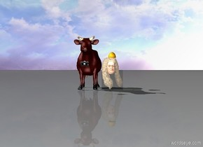 a cow and a head. There is a hat on the head. There is a camera in front of the cow. The camera is 2 feet above the ground