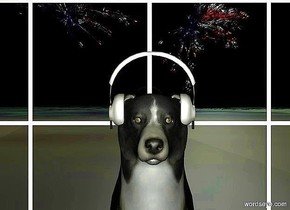 a 1st 5 foot tall border collie. a 1.6 foot wide headset is -.8 foot above and -2 foot in front of the dog.it faces back. ground is matte.  it is night. camera light is beige. a 1st large [flag] weeping willow is 10 feet above and 300 feet behind and 10 feet right of the dog. it leans 90 degrees to the front. sky is black. a 2nd large [flag] weeping willow faces right. it leans 90 degrees to the right. it is 20 feet left of and -70 feet above the 1st weeping willow. a huge window is behind the dog.  a huge light is -40 feet above and in front of the 1st tree. ground is [grass].