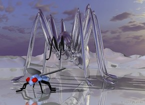 a 300 inch tall and 400 inch wide and 500 inch deep silver spider.the leg of the spider is silver.ground is shiny.ground is 80 feet tall.a 60 inch tall shiny delft blue fly is in front of the spider.the eye of the fly is fire orange.