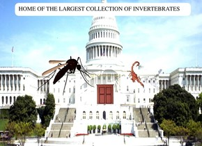 the landscape is 50 feet tall [cap]. it is upside down.a marble. a very enormous copper scorpion is 25 feet right of  and 9 feet in front of the marble. it faces left. it leans 98 degrees to the northeast. 1st door is 7 feet above the ground. it is 19 feet in front of and -22 feet left of the marble. it leans 90 degrees to the front. it faces back. a 10 feet tall mosquito is 10 feet left of the scorpion. it faces right. it leans 60 degrees to the left.