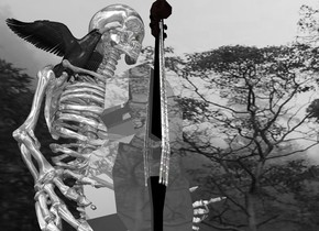 a 100 inch tall  60% dim gray shiny skeleton is -30 inch above the ground.sky is 20000 inch tall  [forest].sky is  gray.sky is 3000 feet tall and 2000 feet wide and 1500 feet deep.ground is clear.a 40 inch tall shiny double bass is -10 inch in front of the skeleton.the double bass is 20 inch above the ground.the double bass is 70% dim gray.the string of the double bass is shiny steel.the bridge of the double bass is silver.a 8 inch tall crow is -16 inch above the skeleton.the crow is -30 inch in front of the skeleton.