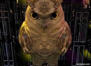a owl is -7 feet above and -6 feet in front of a tiny silver house. it faces right. camera light is black. a yellow light is -6 feet above the house. a purple light is 2 feet behind the yellow light. a blue light is 2 feet behind the purple light. ambient light is linen.