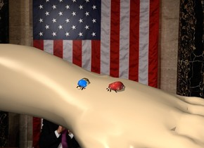 The [Washington] backdrop. The matte tan hand is leaning 90 degrees to the right. the 1st small [blue] bug is -1 inch above the hand. it is facing right. the 2nd small [red] bug is .4 inches to the right of the 1st bug. it is facing the 1st bug.