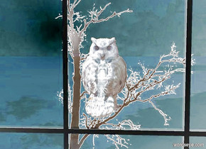 a [tree] backdrop. a 1st dull owl faces back. a 2nd dull owl is -3 foot in front of the 1st owl. a small window is 3 foot in front of and -1.6 foot beneath the owl. a sienna light is in front of and above the owl.