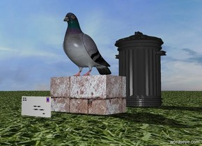 there is a brick. the sky is beautiful. the pigeon is on the brick. the ground is grass. there is an envelope 8 inches in front of the brick. there is a small trashcan 12 inches behind the brick.