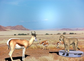 the gazelle.  the 100% dark shadow plane.    The cheetah is 4 feet in front of the gazelle.  the 6 inch tall glass cylinder is -4.5 feet in front of the cheetah. it is 4 feet wide. the cheetah is facing north.