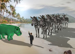 the [image] backdrop. the small man is 2 feet in front of the herd. he is facing the herd. herd.   the hippo is 2 feet to the left of the man. it is facing right. the polka dot texture is on the hippo. the texture is 9 inches tall.