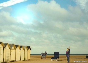 picture backdrop.a donkey.shadow plane.a chair is 6 feet in front of the donkey.it is facing southwest.a man is 5 feet in front of the chair.he is facing left.sea mist blue sun.