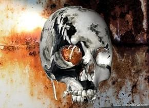 a [animal] skull.