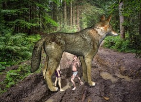 the huge wolf is in the forest. the man is 13 feet in the wolf. he is facing back. a second man is 1 foot behind the man.
